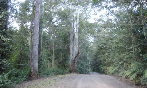Shamballa Community, Boggy Creek Road, Bellingen, Australia